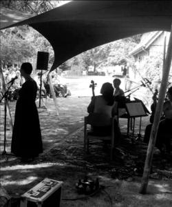 Konzert im Garten des Künstlerhofes (2014)